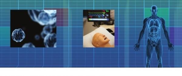 Educational Medical Simulation